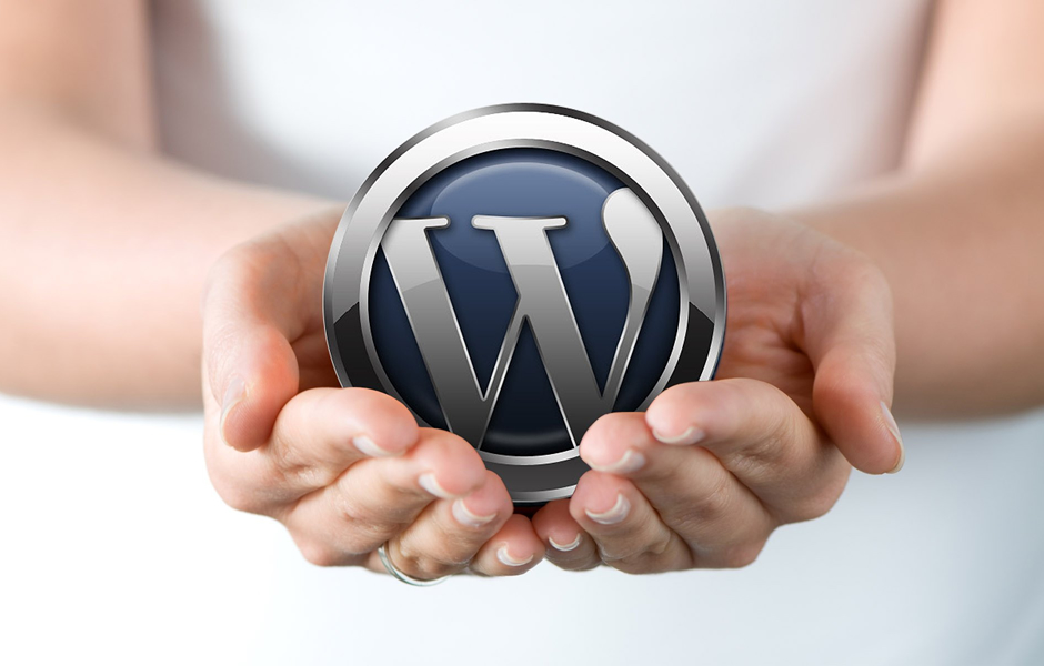 izdelava poceni spletnih strani WordPress
